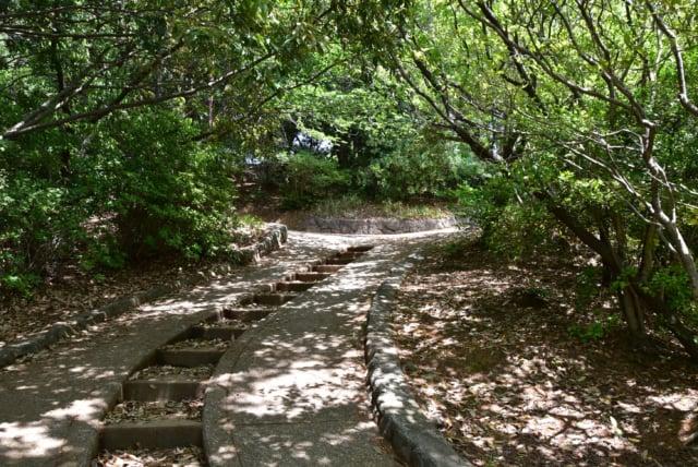 祖原公園の山道
